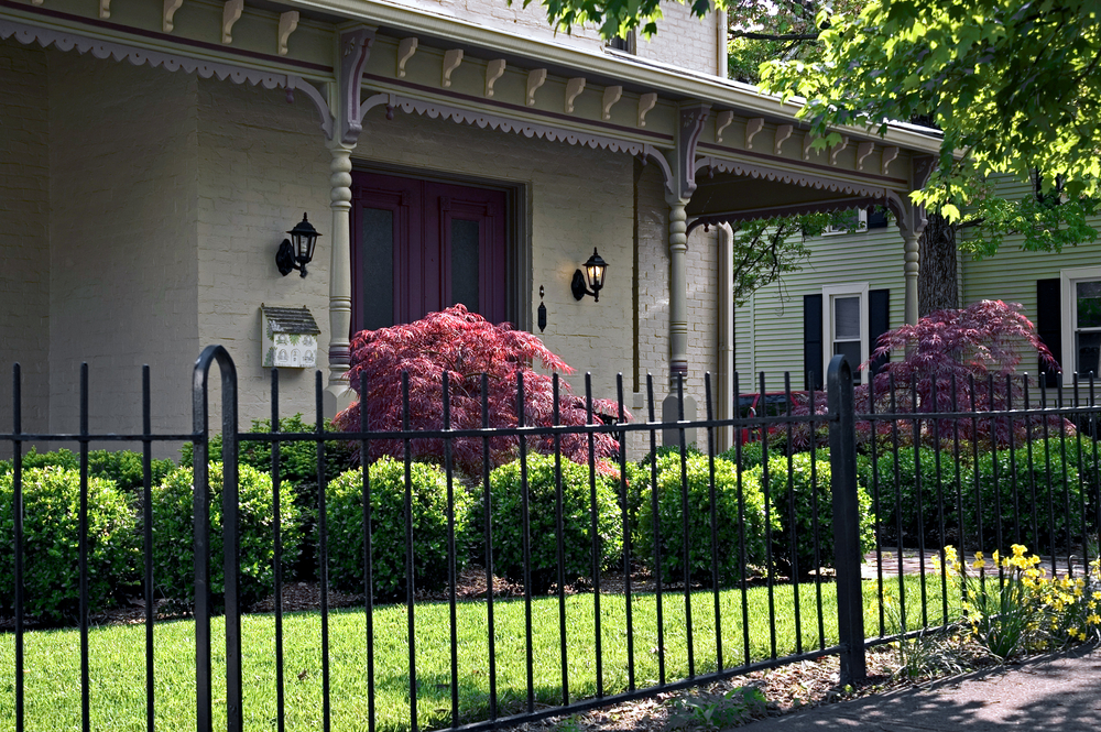 A custom Wrought Iron Fence by Sonoma Fence Company